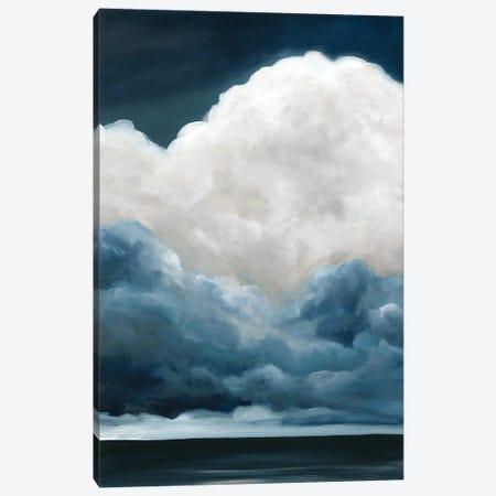 Nature's Drama II Canvas Print #CRO1157} by Carol Robinson Canvas Print