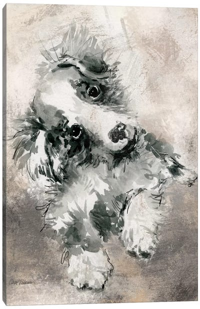 Collie Canvas Art Print