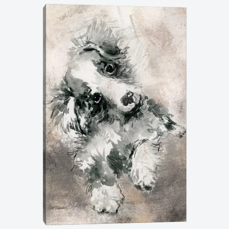 Collie Canvas Print #CRO115} by Carol Robinson Canvas Wall Art