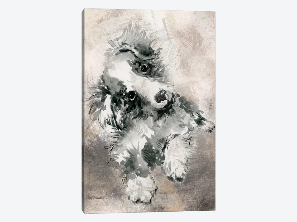 Collie by Carol Robinson 1-piece Canvas Artwork