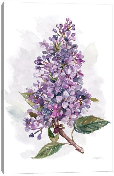 Awash in Lilac I Canvas Art Print