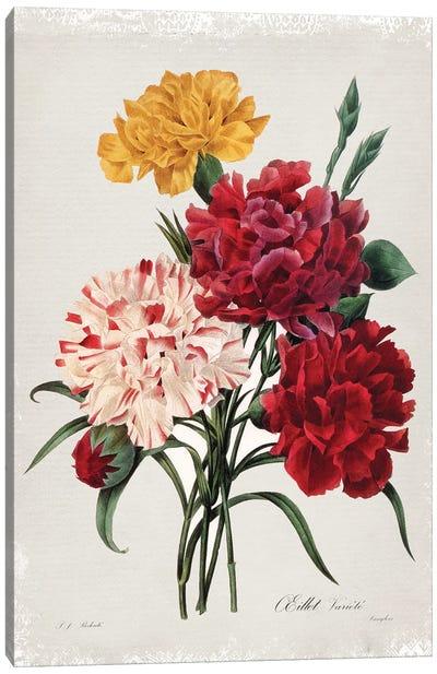 Botanical Bouquet Carnations Canvas Art Print