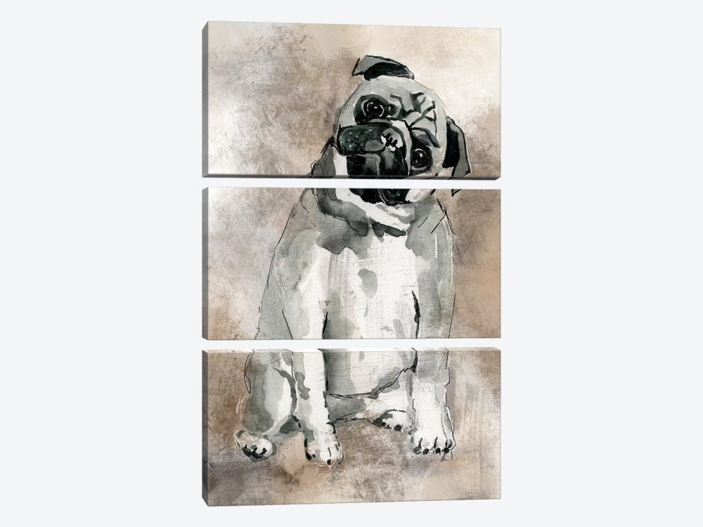 Pug by Carol Robinson 3-piece Canvas Wall Art