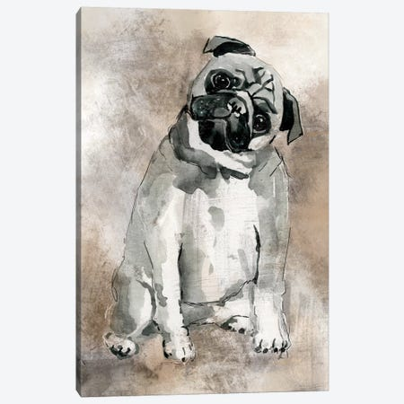 Pug Canvas Print #CRO117} by Carol Robinson Canvas Wall Art