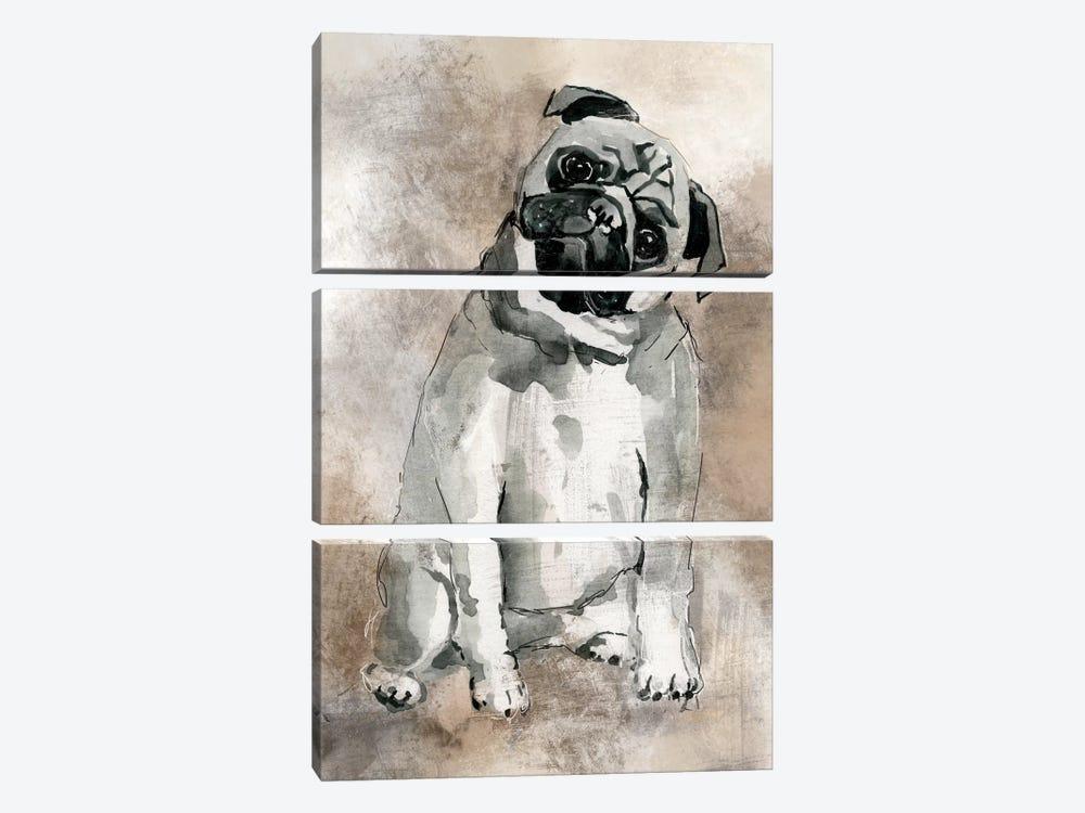 Pug by Carol Robinson 3-piece Canvas Wall Art