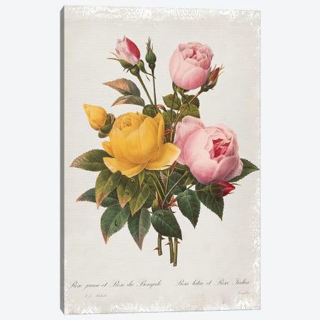 Botanical Bouquet Roses Canvas Print #CRO1180} by Carol Robinson Canvas Art Print