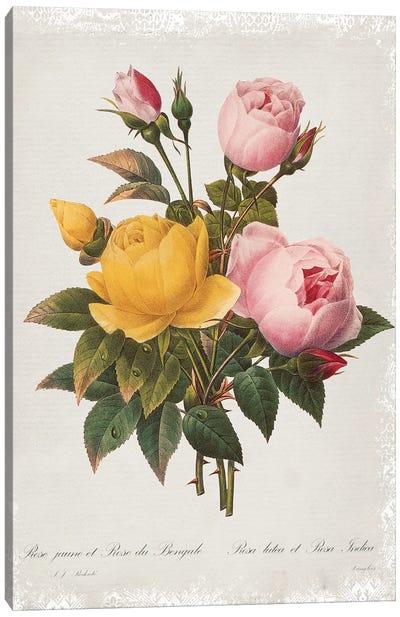 Botanical Bouquet Roses Canvas Art Print