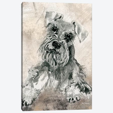 Schnauzer Canvas Print #CRO118} by Carol Robinson Canvas Print