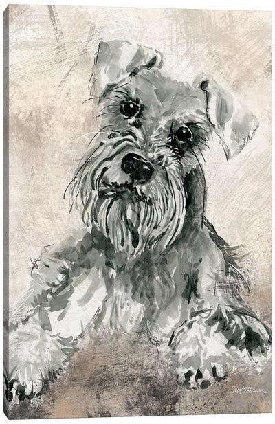 Sketchy Study: Schnauzer Canvas Print #CRO118