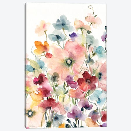 Poppies and Sweetpeas Canvas Print #CRO1199} by Carol Robinson Canvas Wall Art