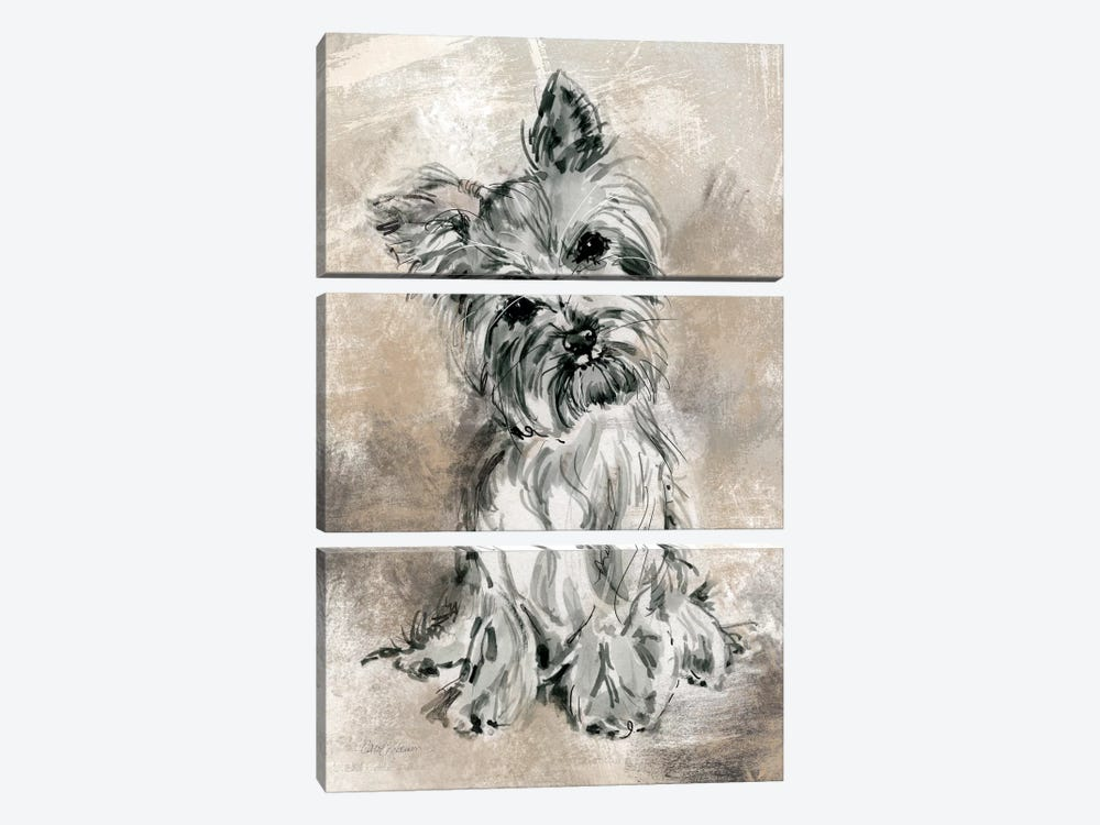 Yorkie by Carol Robinson 3-piece Canvas Art