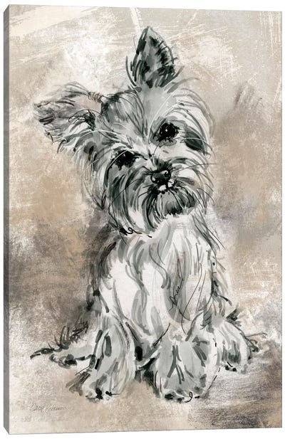 Sketchy Study: Yorkie Canvas Print #CRO119