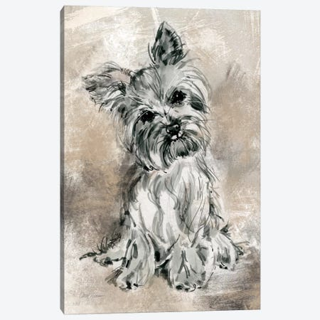 Yorkie 3-Piece Canvas #CRO119} by Carol Robinson Canvas Print
