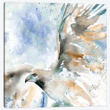 Hawk On Blue Canvas Print #CRO11} by Carol Robinson Art Print