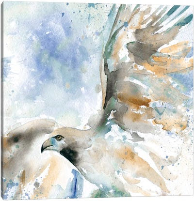 Hawk On Blue Canvas Art Print