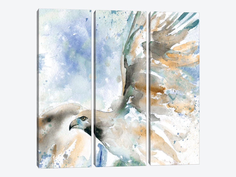 Hawk On Blue by Carol Robinson 3-piece Canvas Art Print