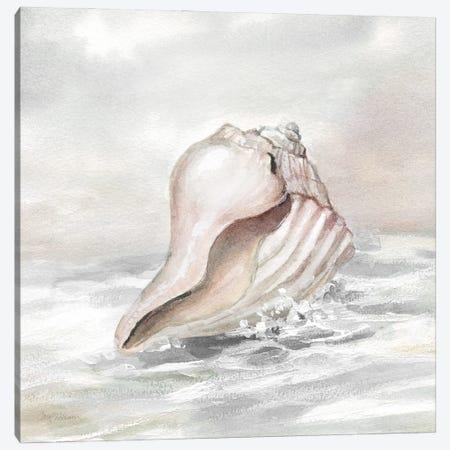 Washed Ashore II Canvas Print #CRO1210} by Carol Robinson Canvas Print