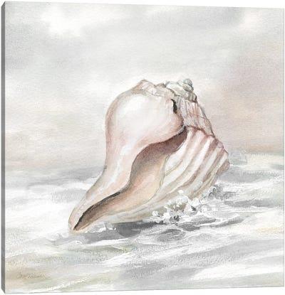 Washed Ashore II Canvas Art Print