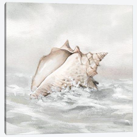 Washed Ashore III Canvas Print #CRO1211} by Carol Robinson Art Print