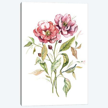 Wild Roses Canvas Print #CRO1215} by Carol Robinson Canvas Artwork