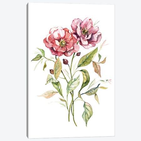 Wild Roses Canvas Print #CRO1215} by Carol Robinson Canvas Artwork