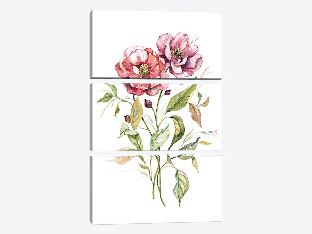Wild Roses by Carol Robinson 3-piece Canvas Wall Art