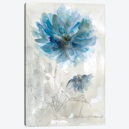 Blue Dahlia Canvas Print #CRO1233} by Carol Robinson Canvas Print