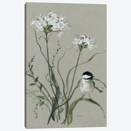 Bouquet of Grace Bird II Canvas Print #CRO1238} by Carol Robinson Art Print