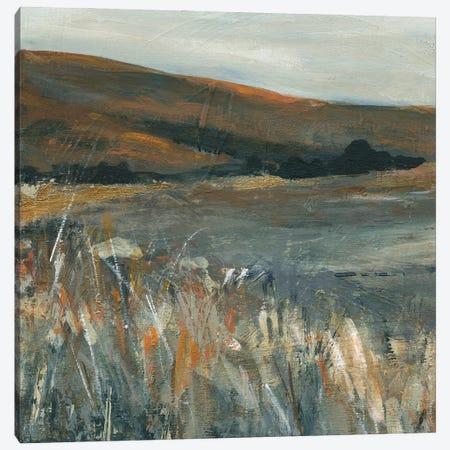 Copper Dusk I Canvas Print #CRO1251} by Carol Robinson Canvas Print