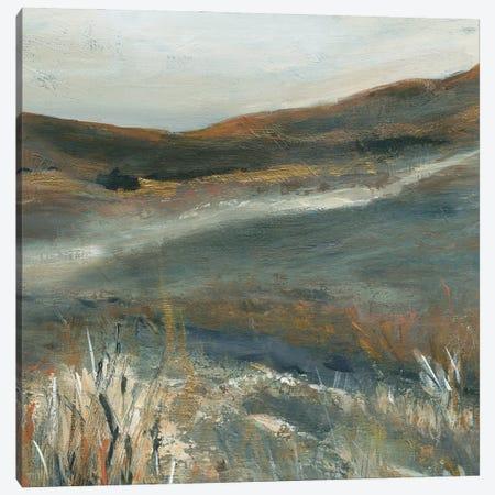 Copper Dusk II Canvas Print #CRO1252} by Carol Robinson Canvas Art Print