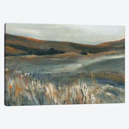 Copper Sunset Canvas Print #CRO1253} by Carol Robinson Canvas Art Print