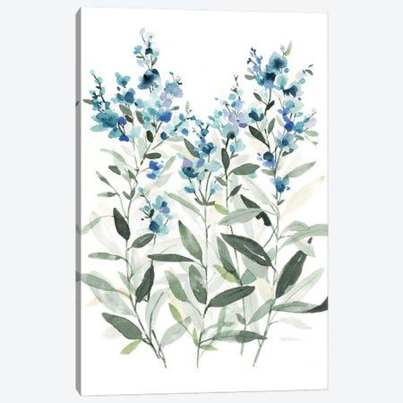 Delicate Blue Botanical II Canvas Print #CRO1255} by Carol Robinson Canvas Artwork