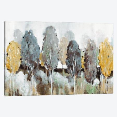 Golden Hour Canvas Print #CRO1262} by Carol Robinson Canvas Wall Art