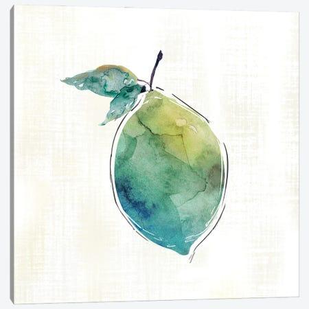 Happy Lime Canvas Print #CRO1265} by Carol Robinson Canvas Art Print