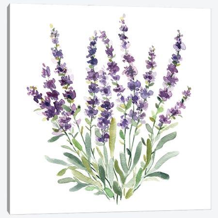Lavender Botanical II Canvas Print #CRO1272} by Carol Robinson Art Print