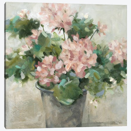 Potted Geranium Canvas Print #CRO1280} by Carol Robinson Canvas Artwork