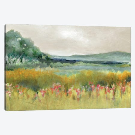 Springtime Calm Canvas Print #CRO1298} by Carol Robinson Canvas Print