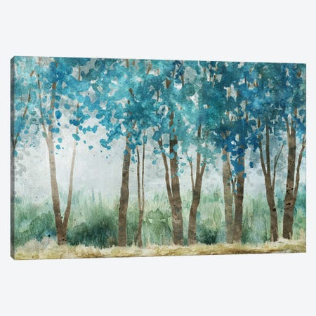 Sunwashed Grove Canvas Print #CRO1306} by Carol Robinson Canvas Wall Art