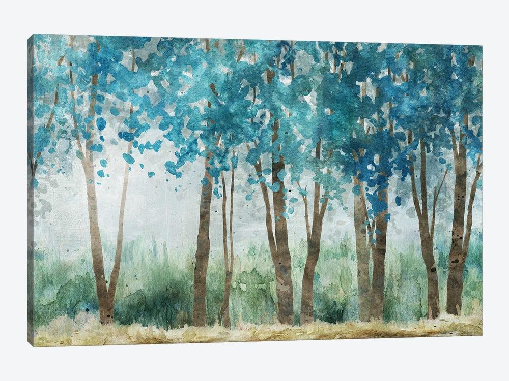 Sunwashed Grove by Carol Robinson 1-piece Canvas Print