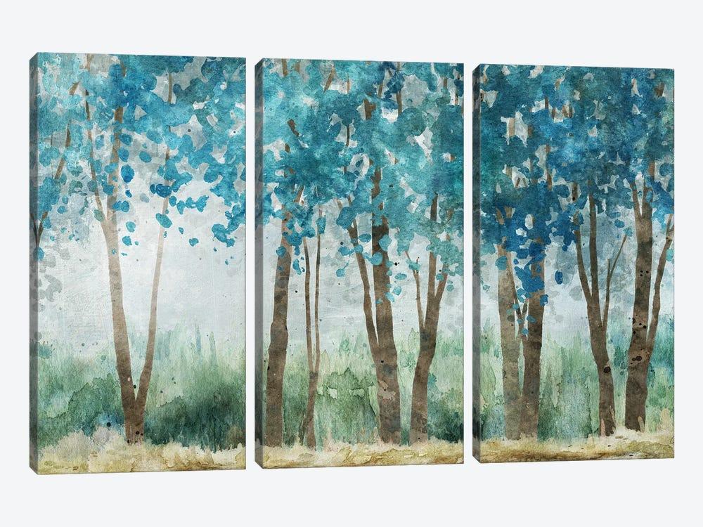 Sunwashed Grove by Carol Robinson 3-piece Canvas Print