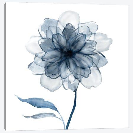 Indigo Bloom IV Canvas Print #CRO1315} by Carol Robinson Canvas Print