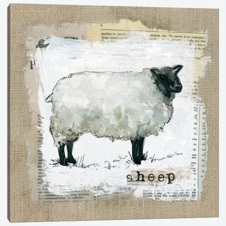 Burlap Sheep Canvas Print #CRO135} by Carol Robinson Canvas Artwork