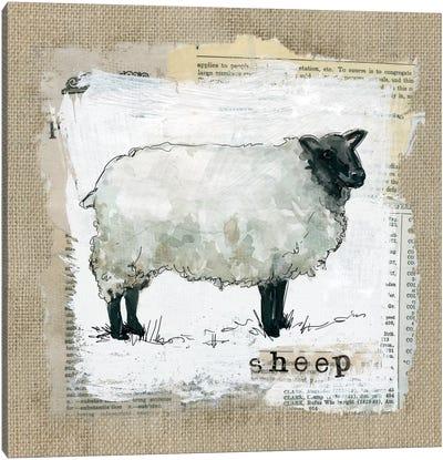 Burlap Sheep Canvas Art Print