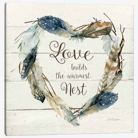 Feather Love Nest Canvas Print #CRO145} by Carol Robinson Art Print