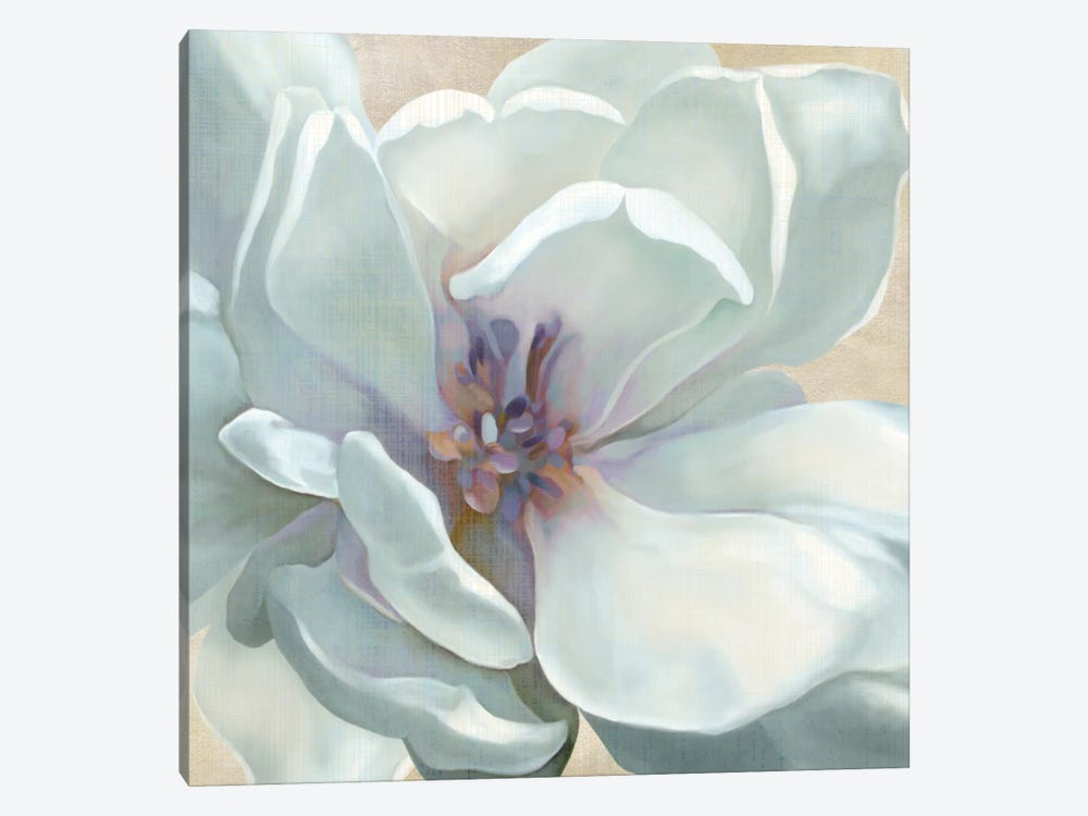 Iridescent Bloom I by Carol Robinson 1-piece Canvas Wall Art