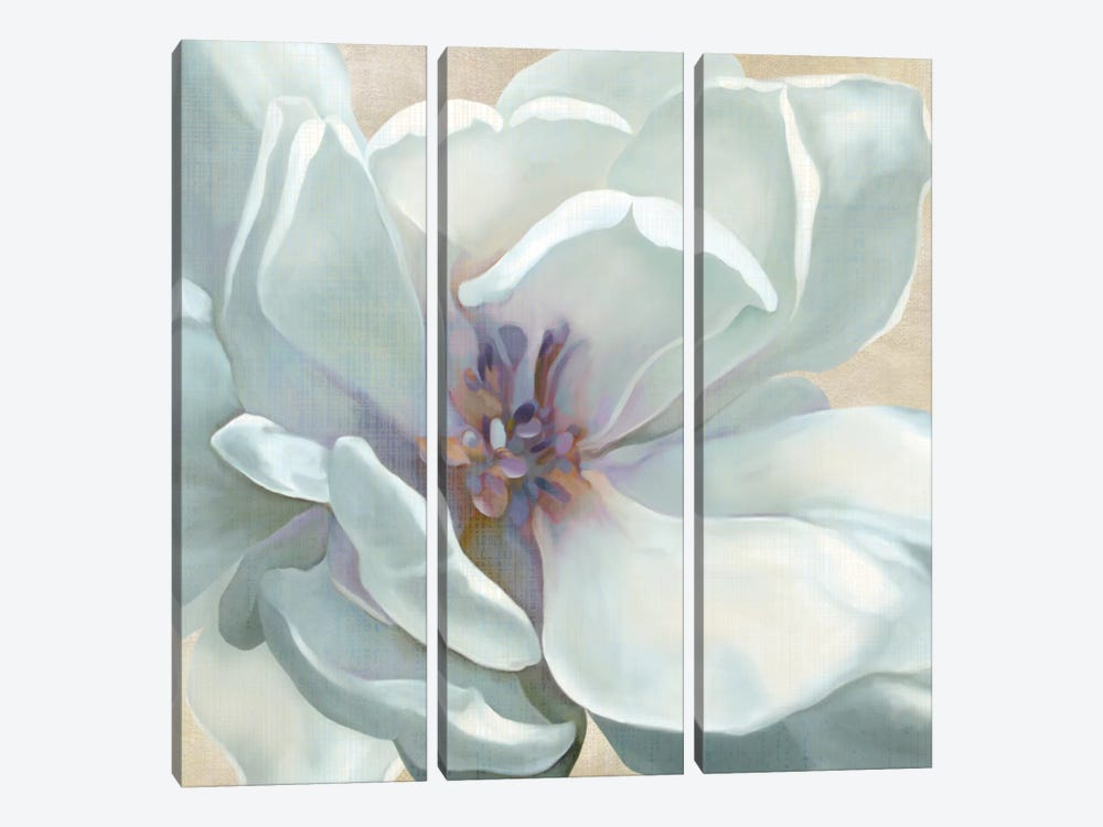 Iridescent Bloom I by Carol Robinson 3-piece Canvas Wall Art