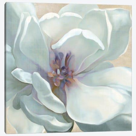 Iridescent Bloom I Canvas Print #CRO14} by Carol Robinson Canvas Artwork