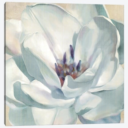 Iridescent Bloom II Canvas Print #CRO15} by Carol Robinson Canvas Wall Art
