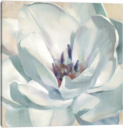 Iridescent Bloom II Canvas Art Print