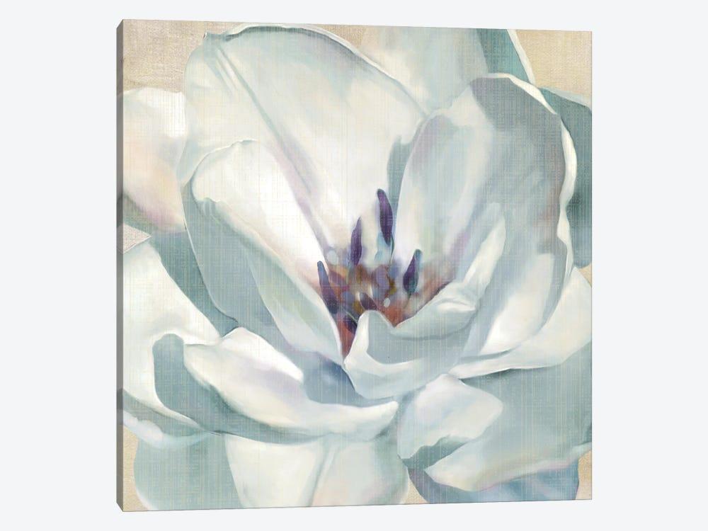 Iridescent Bloom II by Carol Robinson 1-piece Canvas Print